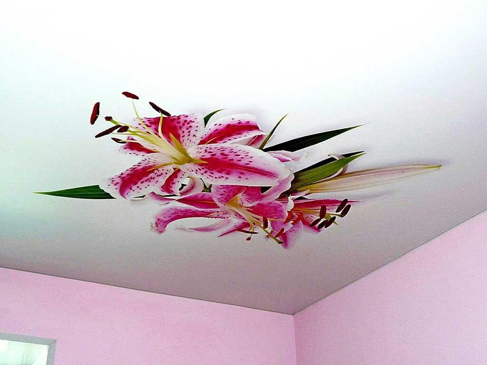 Немецкий потолок с фотопечатью лилии
